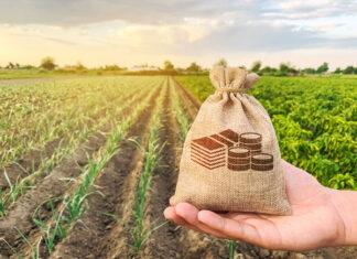 Kredyty dla rolników – podstawowe informacje